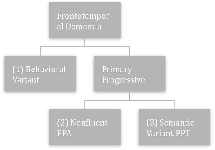 Frontotemporal Diagram
